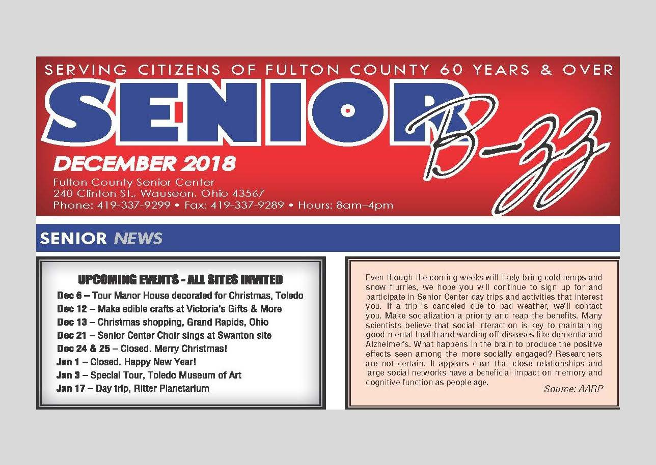Front Page Image promoting the December 2018 Senior B-zz Newsletter